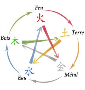 Le cylce d'engendrement des 5 éléments est abordé lors de la formation tuina
